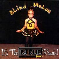 Blind Melon - No Rain (It's The DJ Kue Remix!)