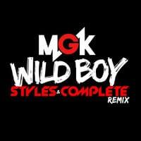 Wild Boy (Styles&Complete Remix)