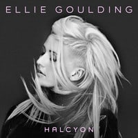 Ellie Goulding - Anything Could Happen (Birdy Nam Nam Remix)