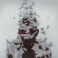Linkin Park - Lost In The Echo (Mr FijiWiji Remix)