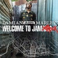 Damian Marley - Welcome to Jamrock (Labrat Remix)
