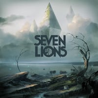 Seven Lions - She was ft. Birds of Paradise