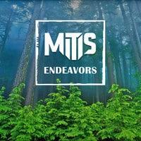 MitiS - Endeavors