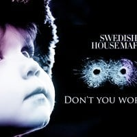 Swedish House Mafia - Don't You Worry Child (Arion Dubstep Remix)