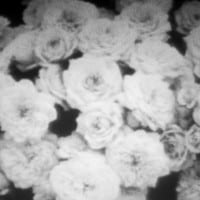 Crystal Castles - PALE FLESH (Tarantula X Remix)