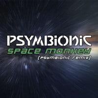 Psymbionic - Space Monkey (Psymbionic Remix)