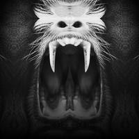 Owl Vision - Dear Evil