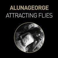 AlunaGeorge - Attracting Flies (Baauer Remix)