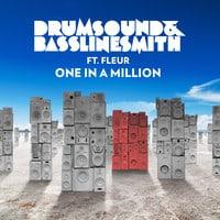 Drumsound & Bassline Smith ft Fleur - One In A Million
