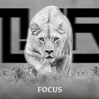 TYR - Focus (Original Mix)