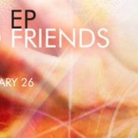 The Two Friends ft. Priyanka Atreya - Feel Me (PrototypeRaptor Remix)