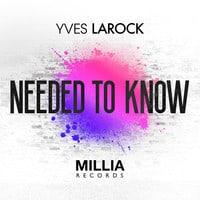 Yves Larock - Needed To Know (Instrumental)