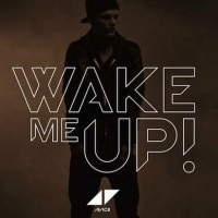Avicii – Wake Me Up (Official Music Video)