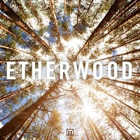 Etherwood LP