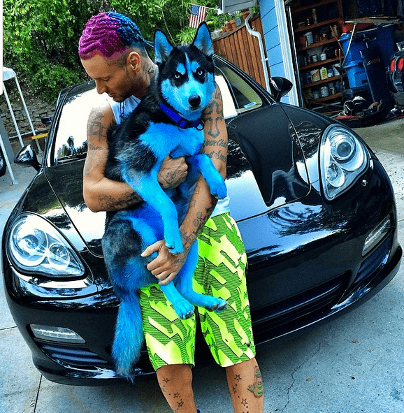 Did Riff Raff Just Dye His Dog The Color Blue