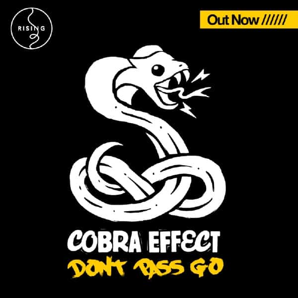 Cobra Effect