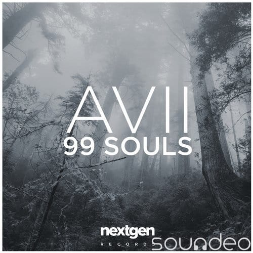 '99 Souls' Avii DJ