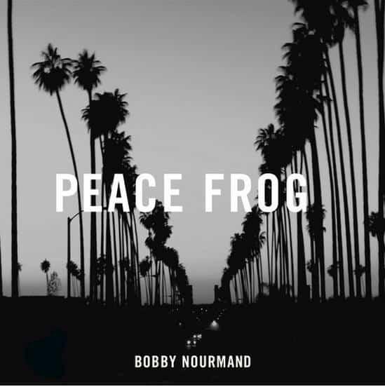 Jim Morrison The Doors Album Cover The Doors - Peace Frog...