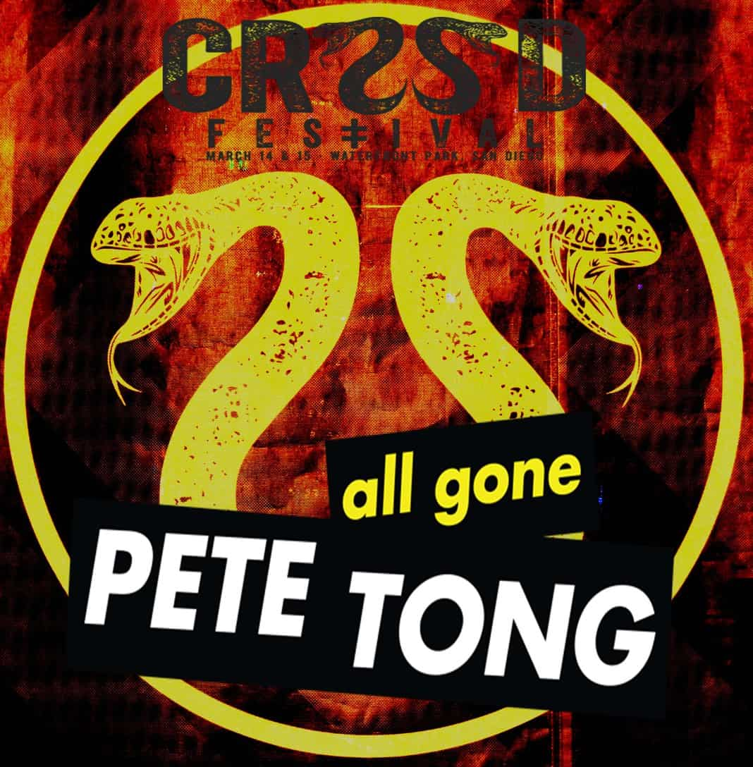 Pete Tong The Palms Mix 2015