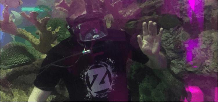 Zedd Underwater