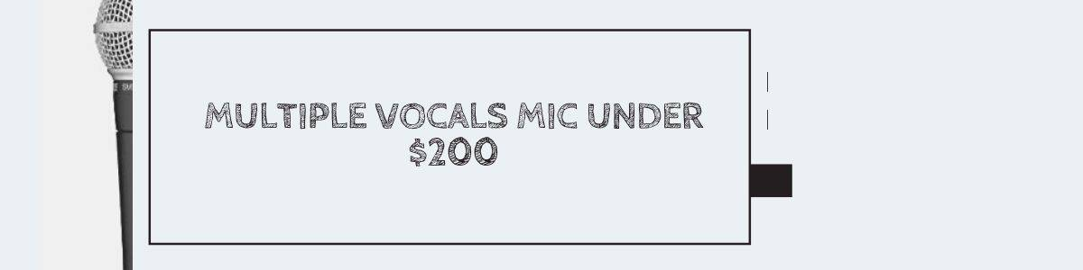 Multiple Vocals Mic Under $200