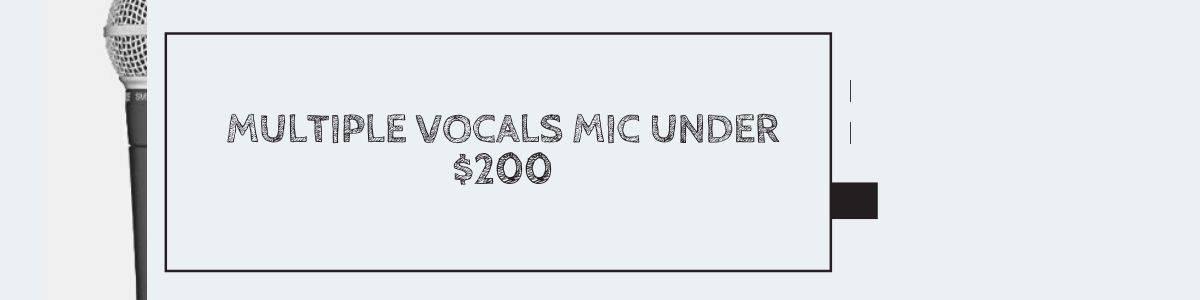 Multiple Vocals Mic Under $200