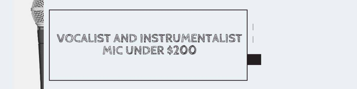 Vocalist and Instrumentalist Mic Under $200