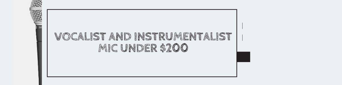 Vocalist and Instrumentalist Mic Under $200